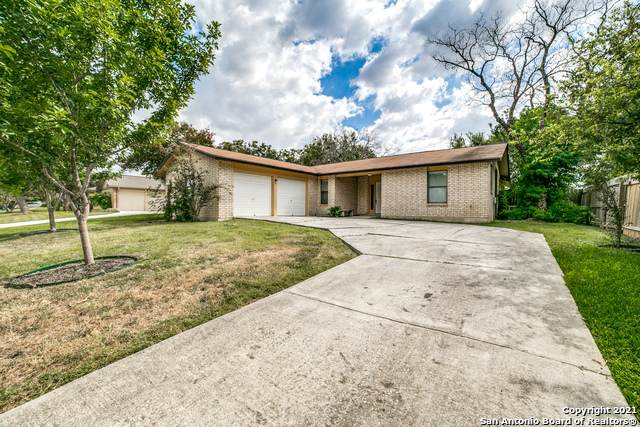 5634 Fountainwood Dr, San Antonio, TX 78233 (MLS #1560880) :: Alexis Weigand Real Estate Group