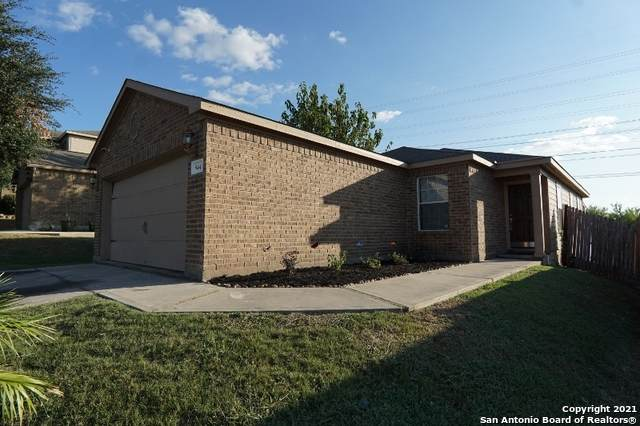 5443 Chase Cyn, San Antonio, TX 78252 (MLS #1561002) :: Alexis Weigand Real Estate Group