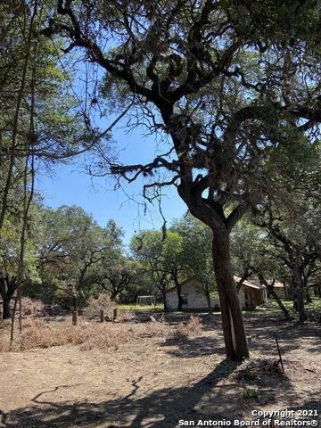157 Sycamore, Helotes, TX 78023 (MLS #1561034) :: Santos and Sandberg