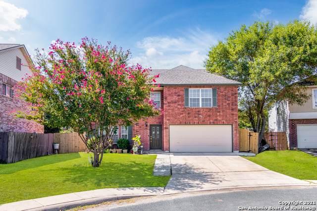 10622 Triggers Crk, San Antonio, TX 78254 (MLS #1561112) :: Vivid Realty