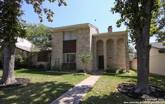 11818 Apple Blossom St, San Antonio, TX 78247 (MLS #1561177) :: Alexis Weigand Real Estate Group