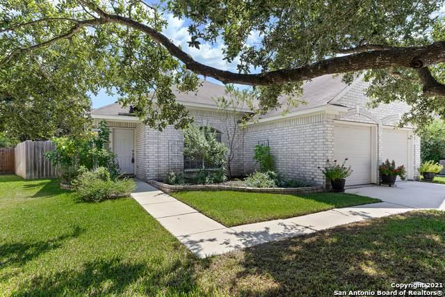 320 Meadow Park, New Braunfels, TX 78130 (MLS #1561212) :: Vivid Realty