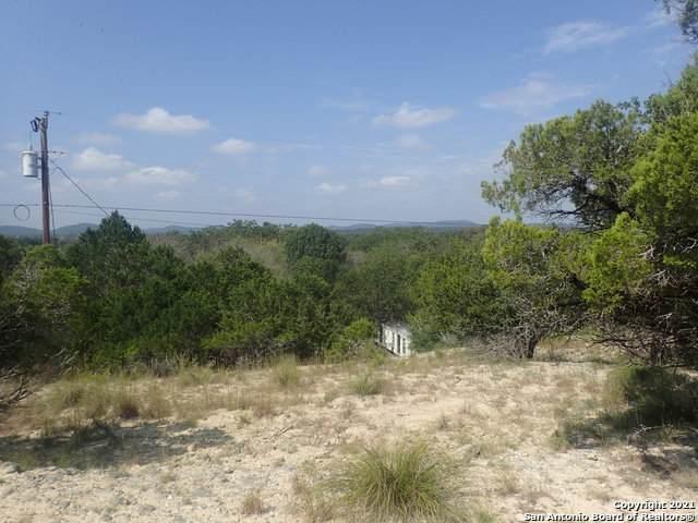 61 Alamo Beach Rd, Lakehills, TX 78063 (MLS #1561213) :: Santos and Sandberg
