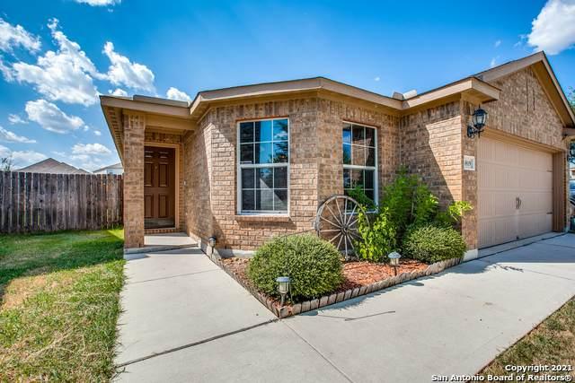 6819 Luckey Path, San Antonio, TX 78252 (MLS #1561242) :: Phyllis Browning Company