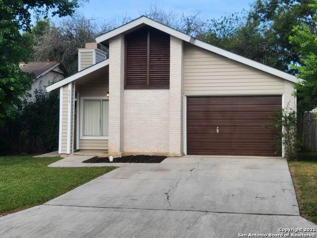 8019 Orchard Bend St, San Antonio, TX 78250 (MLS #1561345) :: Alexis Weigand Real Estate Group