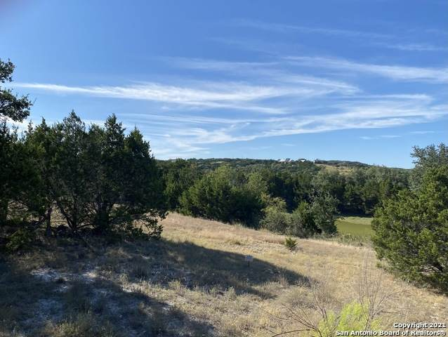 719 Mystic Breeze, Spring Branch, TX 78070 (MLS #1561355) :: Santos and Sandberg