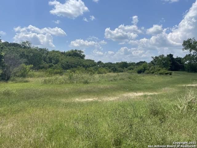 733 Ingram Pl, New Braunfels, TX 78130 (MLS #1561398) :: Vivid Realty