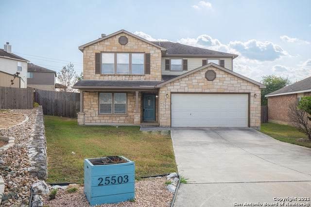 25503 Velvet Rose, San Antonio, TX 78260 (MLS #1561403) :: Texas Premier Realty