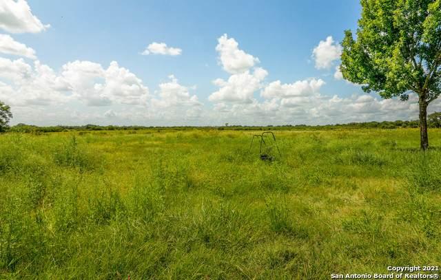 4435 Stapper Rd, St Hedwig, TX 78152 (MLS #1561417) :: 2Halls Property Team | Berkshire Hathaway HomeServices PenFed Realty