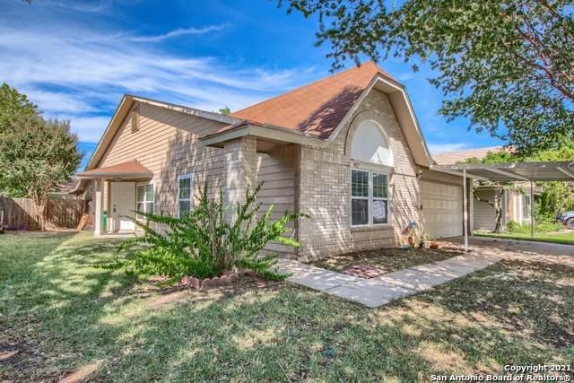 8927 Levelland, San Antonio, TX 78251 (MLS #1561526) :: Texas Premier Realty