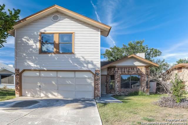 8043 Wayword Trail, San Antonio, TX 78244 (MLS #1561555) :: Alexis Weigand Real Estate Group