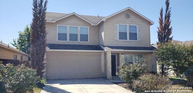 3826 Texas Hawthorn, San Antonio, TX 78261 (MLS #1561558) :: The Gradiz Group