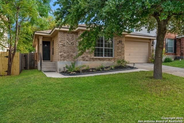 10335 Tiger Hunt, San Antonio, TX 78251 (MLS #1561589) :: Phyllis Browning Company