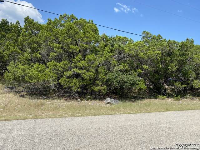 825 Regina Dr, Canyon Lake, TX 78133 (MLS #1561604) :: The Lugo Group