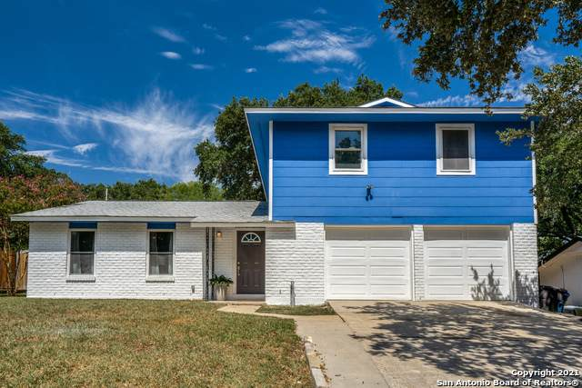 5735 Ben Casey Dr, San Antonio, TX 78240 (MLS #1561609) :: Alexis Weigand Real Estate Group
