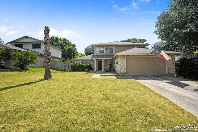 3338 Cadbury Dr, San Antonio, TX 78247 (MLS #1561618) :: The Glover Homes & Land Group