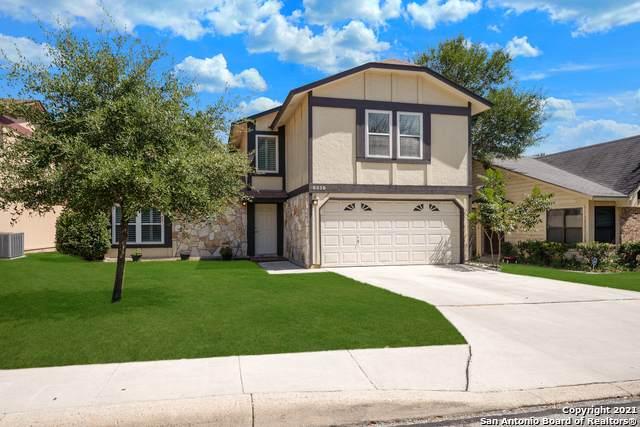 8338 Terra Ferna, San Antonio, TX 78251 (MLS #1561623) :: Texas Premier Realty