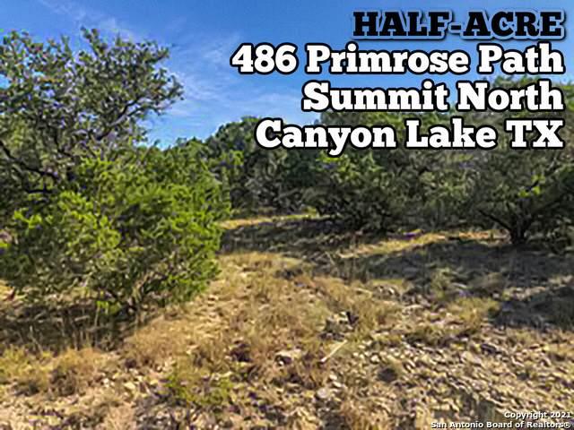 486 Primrose Path, Canyon Lake, TX 78133 (MLS #1561686) :: HergGroup San Antonio Team