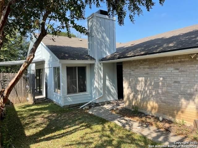 16407 Spruce Leaf St, San Antonio, TX 78247 (MLS #1561763) :: Phyllis Browning Company