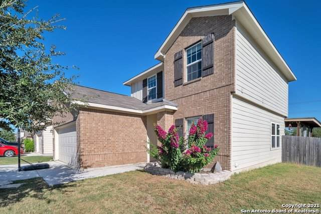 11703 Verdis Valley, San Antonio, TX 78245 (MLS #1561780) :: The Glover Homes & Land Group