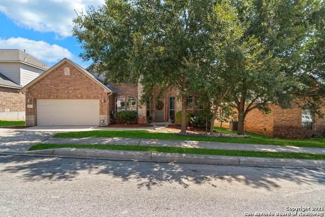 3310 Roan Valley, San Antonio, TX 78259 (MLS #1561876) :: Exquisite Properties, LLC