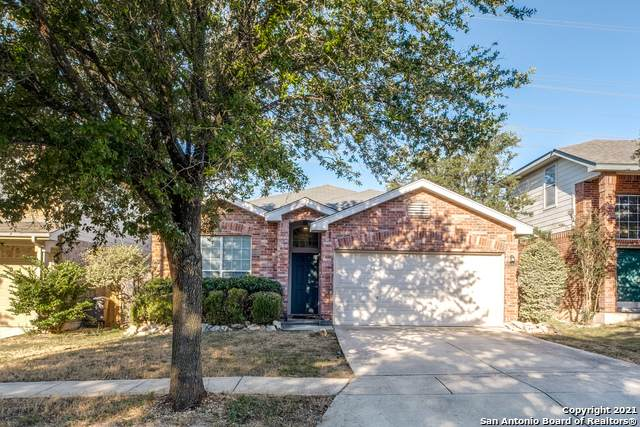 13635 Topaz Lk, Helotes, TX 78023 (MLS #1561904) :: Alexis Weigand Real Estate Group