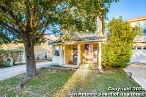 209 Hampton Cove, Boerne, TX 78006 (MLS #1561930) :: Bexar Team