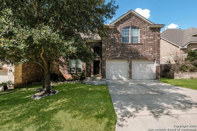 24231 Cafe Hill, San Antonio, TX 78260 (MLS #1561990) :: Concierge Realty of SA