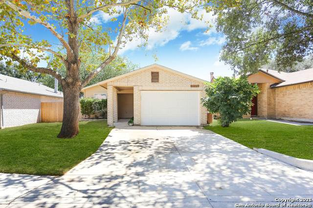 11422 Potter Valley, San Antonio, TX 78245 (MLS #1562027) :: The Glover Homes & Land Group