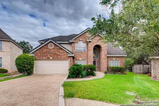 19702 Ranch Mdws, San Antonio, TX 78258 (MLS #1562322) :: The Glover Homes & Land Group