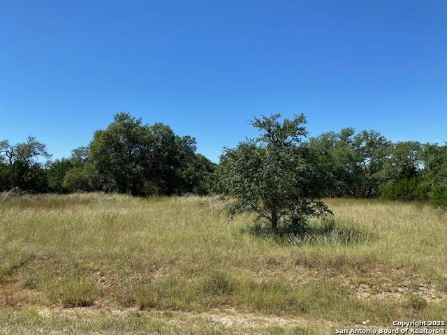 106 Riley Wood, Blanco, TX 78606 (MLS #1562383) :: The Rise Property Group