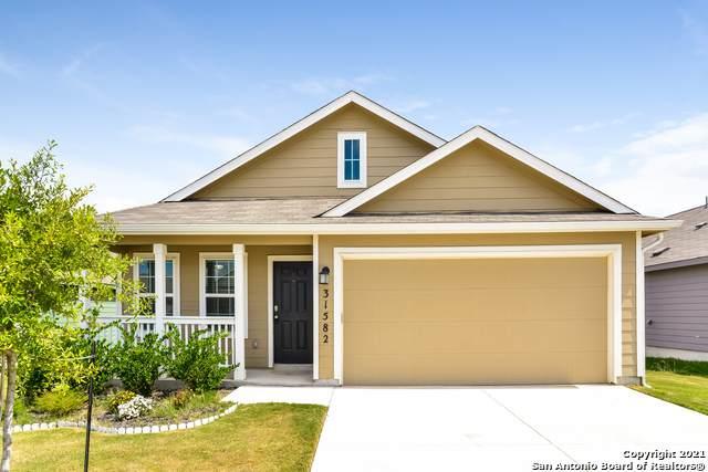 31582 Acacia Vista, Bulverde, TX 78163 (MLS #1562414) :: The Rise Property Group