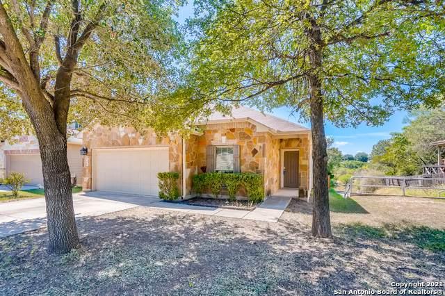 9710 Nueces Cyn, San Antonio, TX 78251 (MLS #1562488) :: ForSaleSanAntonioHomes.com