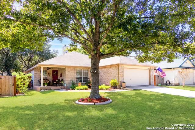 3716 Limestone Mesa, Schertz, TX 78154 (MLS #1562760) :: Alexis Weigand Real Estate Group