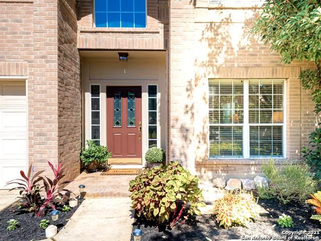 115 Nueva Vista, San Antonio, TX 78258 (MLS #1562784) :: The Glover Homes & Land Group