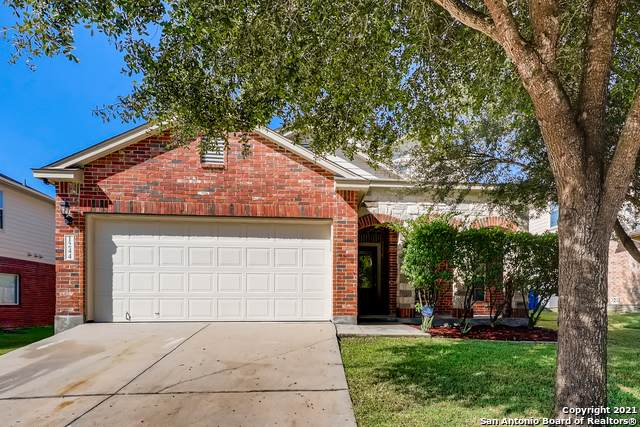 1244 Ruddy Duck, New Braunfels, TX 78130 (MLS #1562834) :: Vivid Realty
