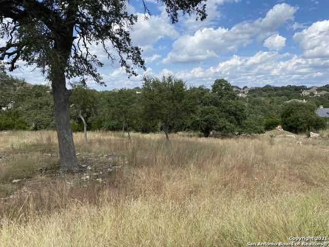 1008 Vintage Way, New Braunfels, TX 78132 (MLS #1562965) :: BHGRE HomeCity San Antonio