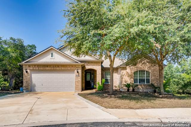 12643 Biscuit Hl, San Antonio, TX 78253 (MLS #1563086) :: Alexis Weigand Real Estate Group