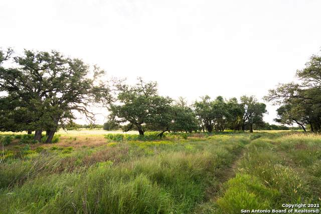 TRACT #15 Twin Oaks Drive, Round Mountain, TX 78663 (MLS #1563135) :: Vivid Realty