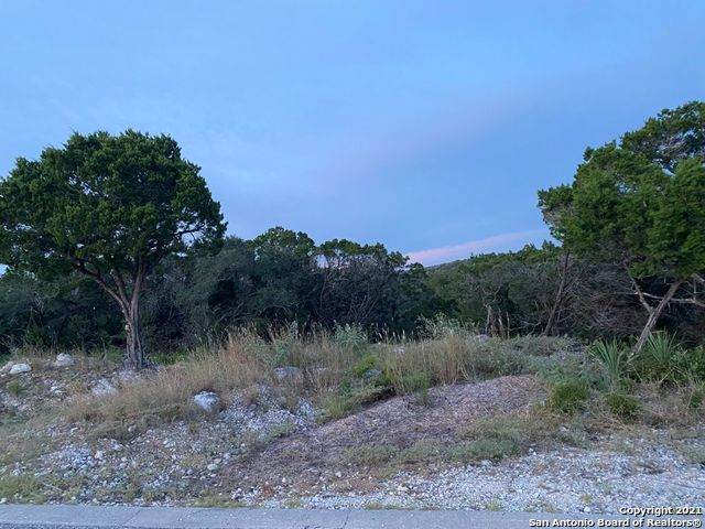 LOT 452 PR 1748 N Pr 1709 Right On 1712 Left On 1742    Left On 1748, Mico, TX 78056 (MLS #1563271) :: The Glover Homes & Land Group