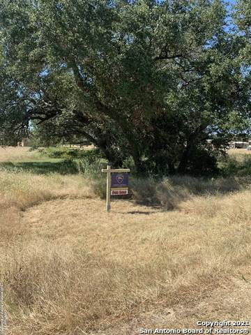 101 Vintage Run Dr, La Vernia, TX 78121 (MLS #1563343) :: The Gradiz Group