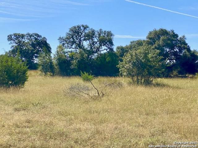 LOT 723 W Pat Dolan, Blanco, TX 78606 (MLS #1563365) :: Beth Ann Falcon Real Estate