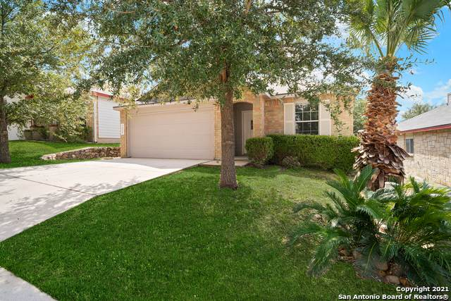 7658 Presidio Ledge, Boerne, TX 78015 (MLS #1563393) :: Beth Ann Falcon Real Estate