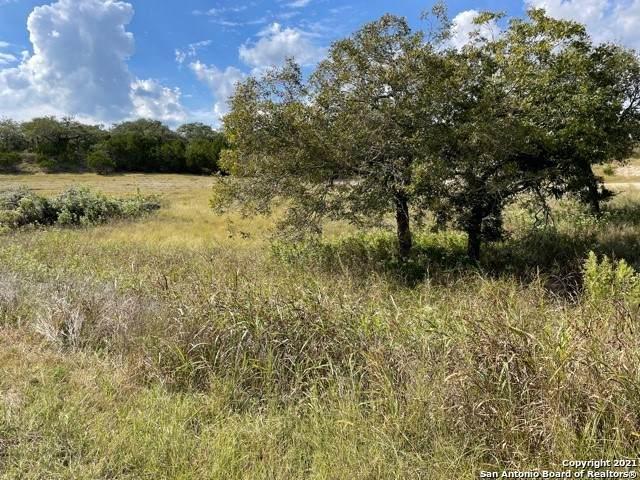 3532 Comal Springs, Canyon Lake, TX 78133 (MLS #1563433) :: Beth Ann Falcon Real Estate