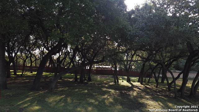 1545 Hillcrest Forest, Canyon Lake, TX 78133 (MLS #1563496) :: Beth Ann Falcon Real Estate