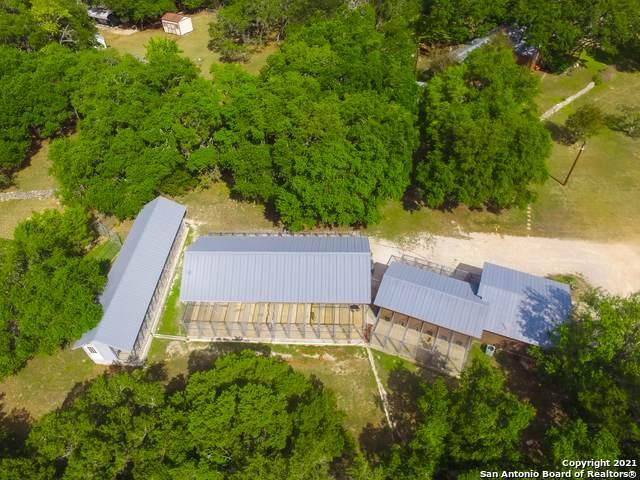 31641 Rice Rd, Bulverde, TX 78163 (MLS #1563523) :: The Real Estate Jesus Team