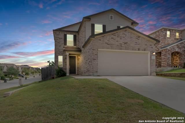 8402 Picoso Pt, San Antonio, TX 78252 (MLS #1563528) :: Countdown Realty Team