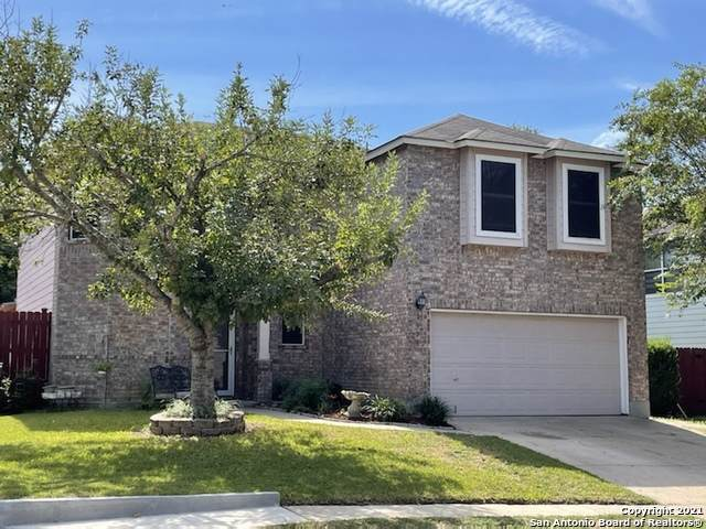 3328 Sherwin Dr, Cibolo, TX 78108 (MLS #1563545) :: Alexis Weigand Real Estate Group