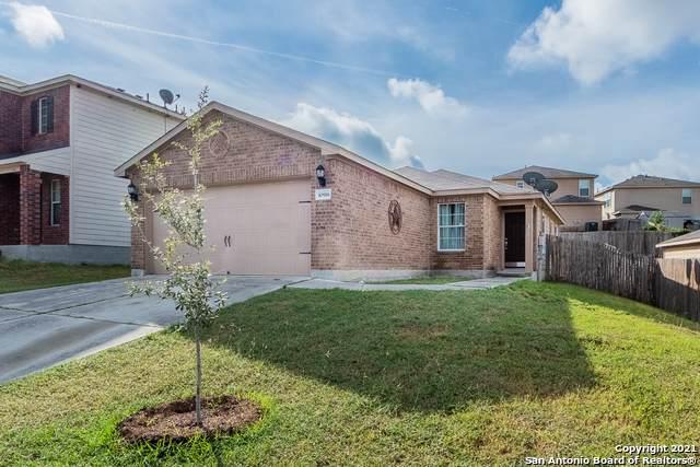 10918 Acorn Cyn, San Antonio, TX 78252 (MLS #1563555) :: Texas Premier Realty