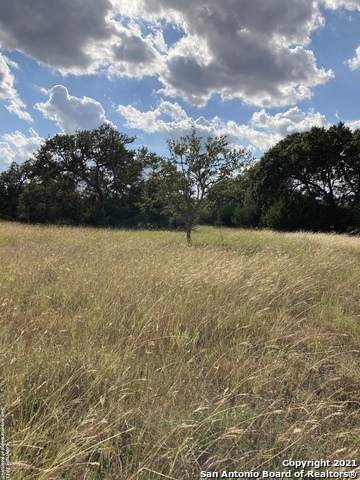 00 N Lon Price, Blanco, TX 78606 (MLS #1563571) :: Beth Ann Falcon Real Estate